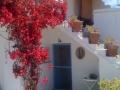 garden-patios-8